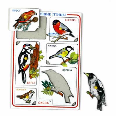 Рамка-вкладыш Птицы зимующие -