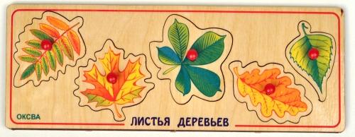 Рамка-вкладыш Листья деревьев (доска Сегена) - Игра