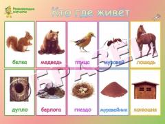 """Магниты """"Кто где живет"""" (20*30)"""