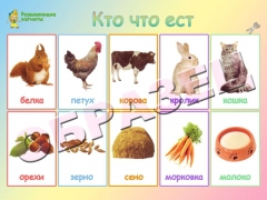 """Магниты """"Кто что ест"""" (20*30)"""