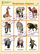 """Магниты """"Животные Африки"""" (20*30)"""