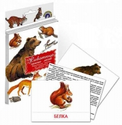 """Дидактические карточки """"Животные наших лесов"""""""