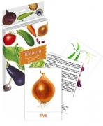 """Дидактические карточки """"Овощи"""""""