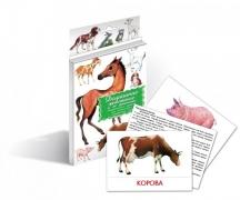 """Дидактические карточки """"Домашние животные и их детеныши"""""""