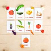 """Набор по методике Г. Домана """"Овощи"""": 9 карточек + 9 овощей"""